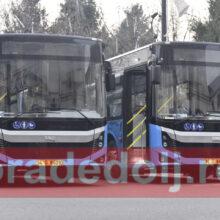 craiova, autobuze