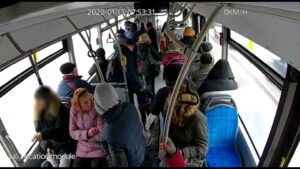 rat, seminte, autobuz